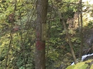 十三の滝 二の滝看板