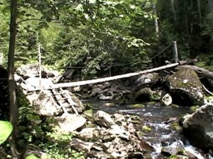 1つ目の丸太橋