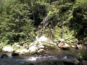 錦糸の滝手前の無名滝