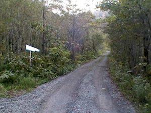 七線沢林道