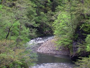 春別林道から見た日高幌別川