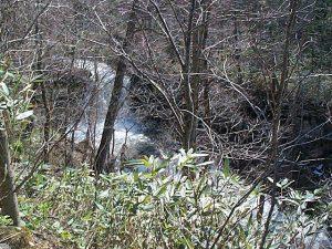 林道から見た比翼の滝