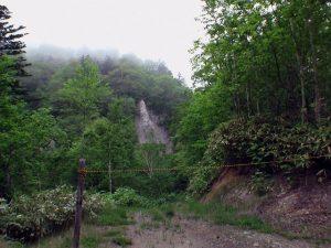 林道分岐で沢へ下りる