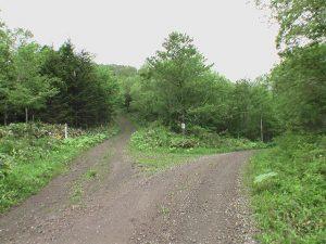 クテクンベツ林道最後の分岐は右