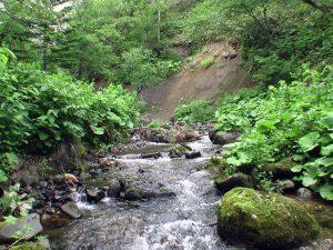 入渓後まもなくのクテクンベツ川