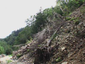 林道土砂崩れ