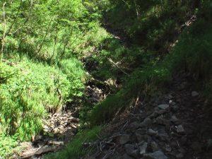 涸れ沢の登山道