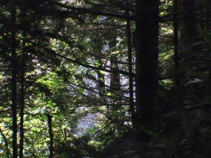 崖の下に美里別滝