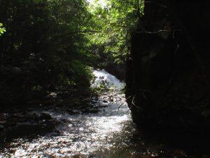 遠目に見る美里別滝