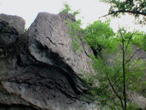 屏風岩を見上げる