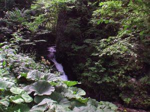 林道から見た白滝