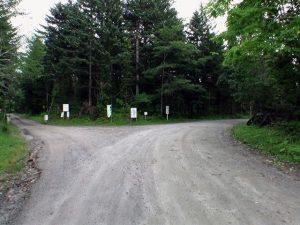 最初の林道分岐は右へ