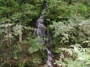 島田温泉跡近くの流れ