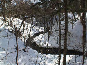 冬の勇払川