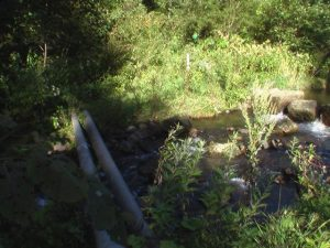 早月川にかかる電柱の橋