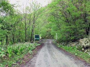 林道ゲートが閉まっていた