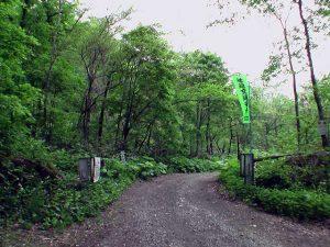 Y字路から1kmほどにある林道ゲート