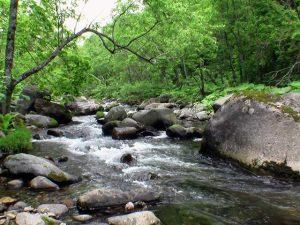 幌別来馬川の流れ