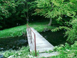 遊歩道入り口付近の橋