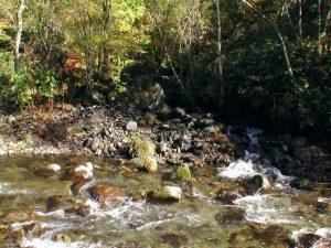 聖の滝がかかる沢の入り口