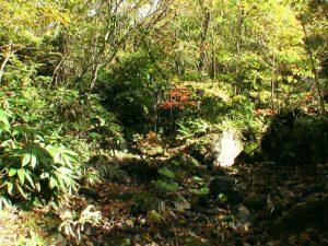 聖の滝がかかる沢の様子1