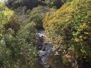 鉱山橋から胆振幌別川下流を見る