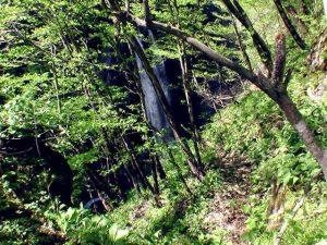 木の葉越しにフタップの滝が見えた