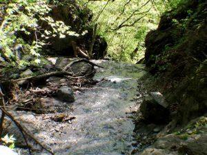 さらに滝となって新冠川へ落ちるのだろうか?
