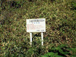 ショロマの滝案内看板