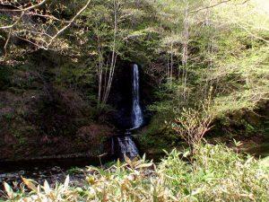 倒木を越えるとすぐショロマの滝が見えた