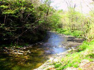 滝の近くから下流を見る
