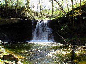 ショロマ川上流の滝-仮-
