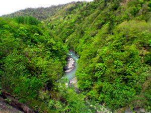 元浦川林道のはるか下を流れる元浦川