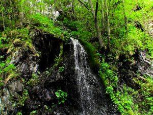 季節限定と思われる滝状の流れ