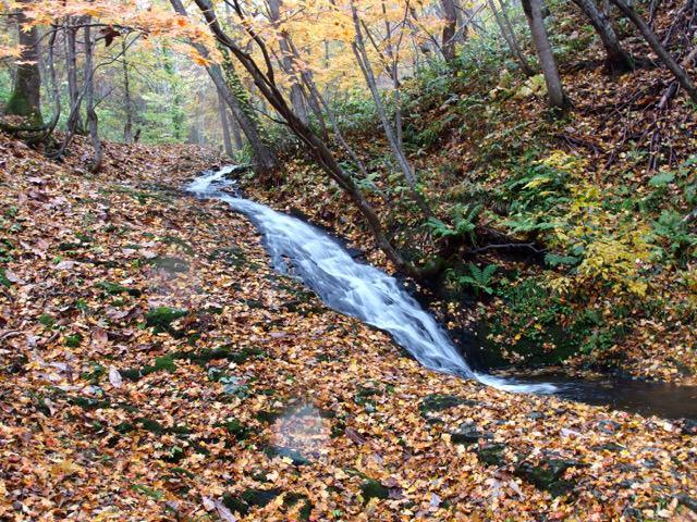 落ち葉に囲まれた八垂別の滝