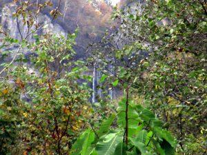 展望台から滝を見る