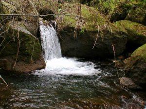 小滝に癒される