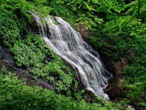 俯瞰気味に見る檜沢の滝