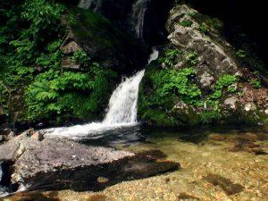 滝の下段、水もきれいだ
