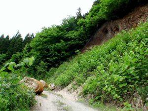 林道上に転がり落ちた岩