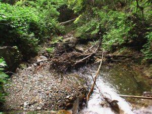 七色滝の下流側