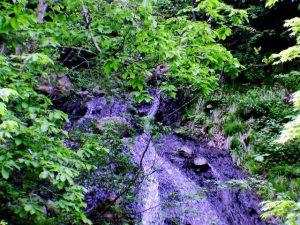 葉っぱで見えない布の滝上部