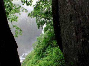賀老の滝が見えてきた