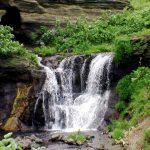 化石の滝アップ