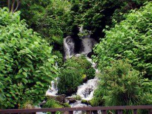 政泊橋から見えた滝状の流れ