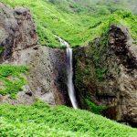 国道沿いから見た白糸の滝