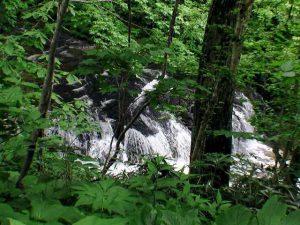 盃川の滝状の流れ