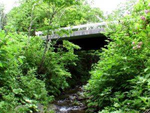 盃川から見上げる奥盃橋