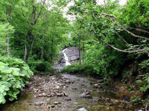 遠目で見る盃川上流の滝