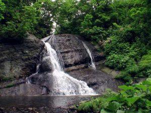 盃川上流の滝全景